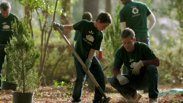 vídeos de stock, filmes e b-roll de volunteers planting trees - community