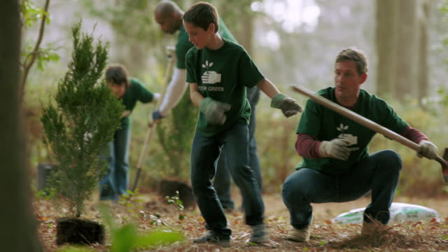 Volunteers planting trees