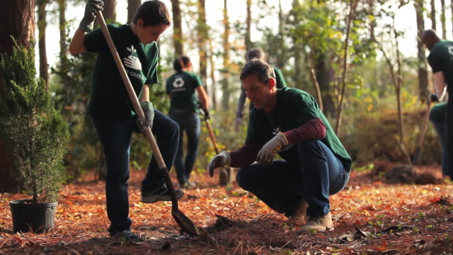 volunteers planting trees - social issues stock videos & royalty-free footage