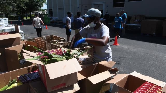 volunteers prepare food from the second harvest food bank of central florida for distribution to the needy at church in the son on august 7, 2020 in... - organised group stock videos & royalty-free footage