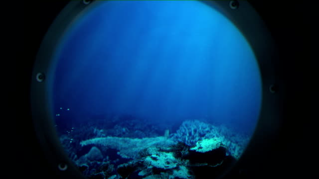 voyage under the sea (no shark) - submarine stock videos and b-roll footage