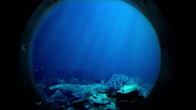 vidéos et rushes de voyage sous la mer (pas de requin - hublot
