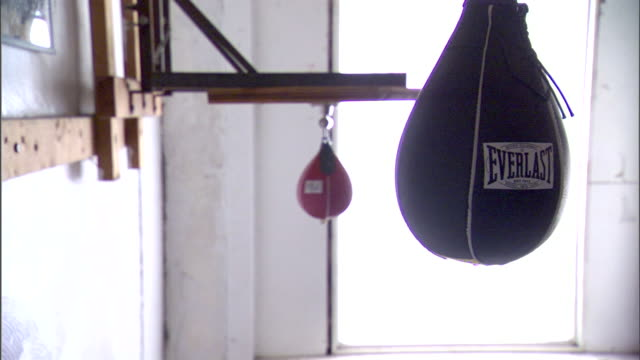 w/ speed bags: hd: everlast small speed bag hanging fg, with another hanging bg in older workout room w/ bright diffused light. no people. - punch bag stock videos & royalty-free footage