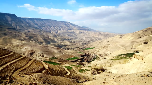wadi al mujib valley / jordan - nature reserve stock videos & royalty-free footage