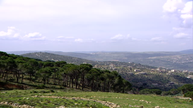 wadi taym. pan left from a view of the hilly wadi taym region of southern lebanon to a pine grove. - pinaceae stock videos & royalty-free footage