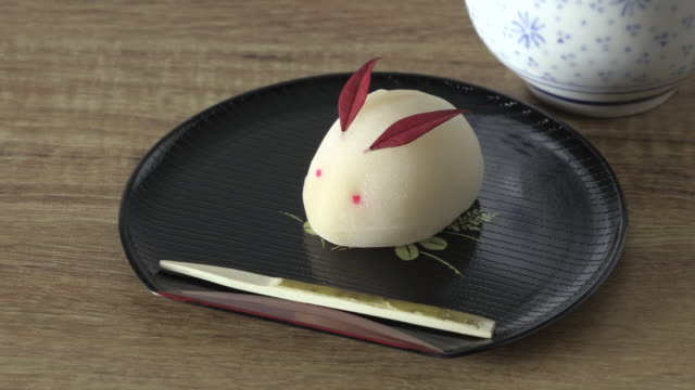 wagashi-traditional sweets of japan - 美術工芸点の映像素材/bロール