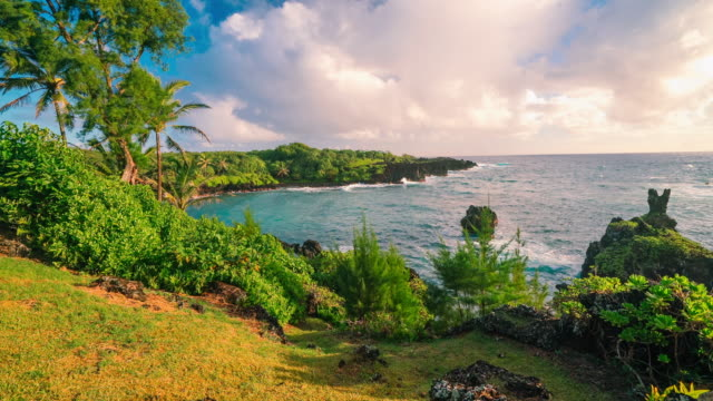 waianapanapa beach view - maui stock videos & royalty-free footage