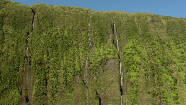 Waihilau waterfall trickles down lush green cliffs in Hawaii's Waimanu Valley.