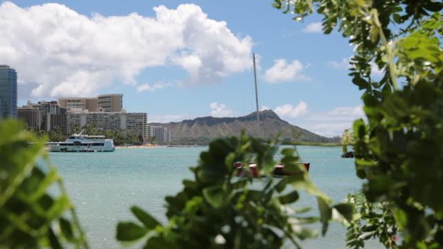 waikiki beach, honolulu, hawaii - honolulu stock videos and b-roll footage