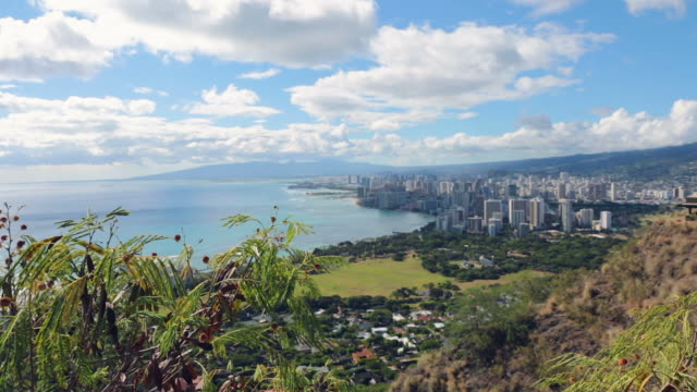 waikiki beach view from diamond head, honolulu, hawaii - hawaii islands stock videos and b-roll footage