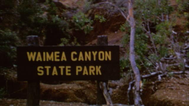 waimea canyon signage shots of canyon beach resort sunbathing mountainside waimea canyon state park on august 01 1975 in kauai hawaii - kauai stock videos & royalty-free footage