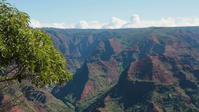 waimea canyon state park landscape and waterfall, kauai, hawaii - na pali coast state park stock videos & royalty-free footage