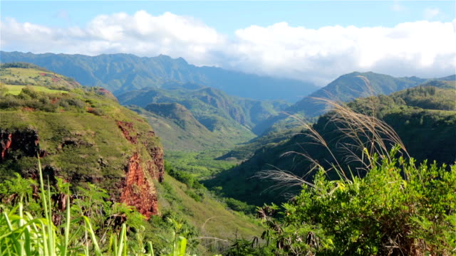waimea canyon state park landscape, kauai, hawaii - kauai stock videos & royalty-free footage