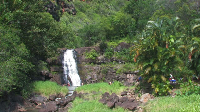 waimea falls 2 - hd 30f - medium group of people stock videos & royalty-free footage