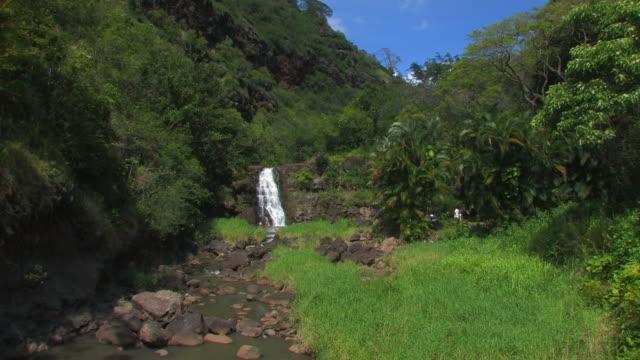 waimea falls - hd 30f - oahu stock videos and b-roll footage