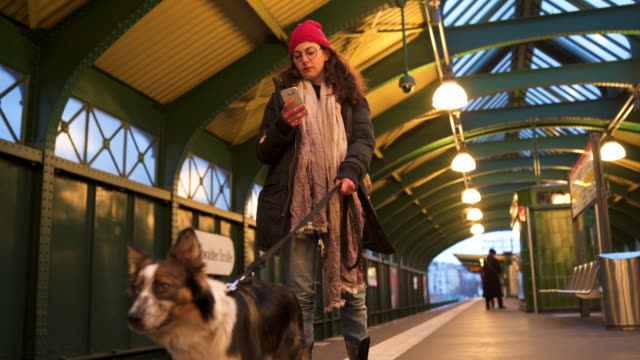 waiting for our transport - pet owner stock videos & royalty-free footage
