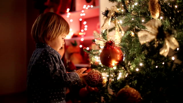 waiting for presents under christmas tree - decorating the christmas tree stock videos & royalty-free footage