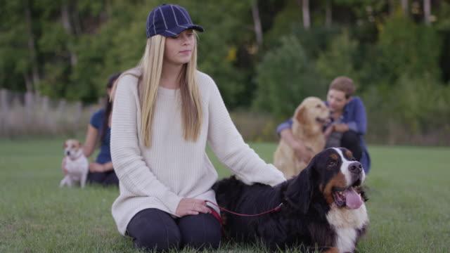 vídeos de stock e filmes b-roll de waiting to start obedience training - trela de animal de estimação