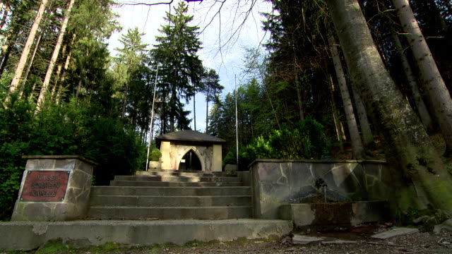 waldfriedhof - grave of an emperor in a cemetery in innsbruk - plaque bacteria stock videos & royalty-free footage