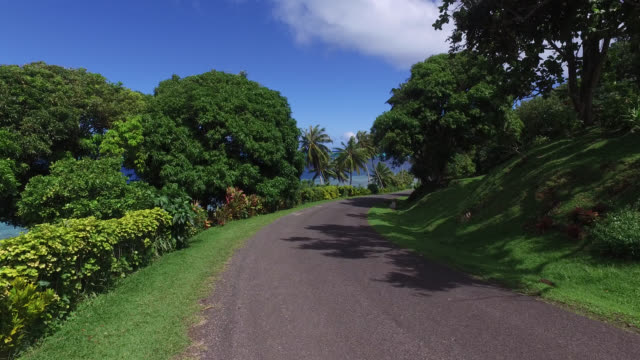 walk by the road with trees and the sea - tahaa island stock videos & royalty-free footage