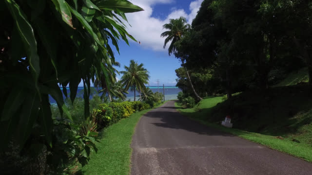 walk by the road with trees and the sea - isola di tahaa video stock e b–roll