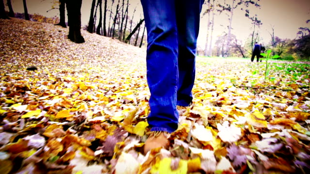 walk in a park. - vignette stock videos & royalty-free footage