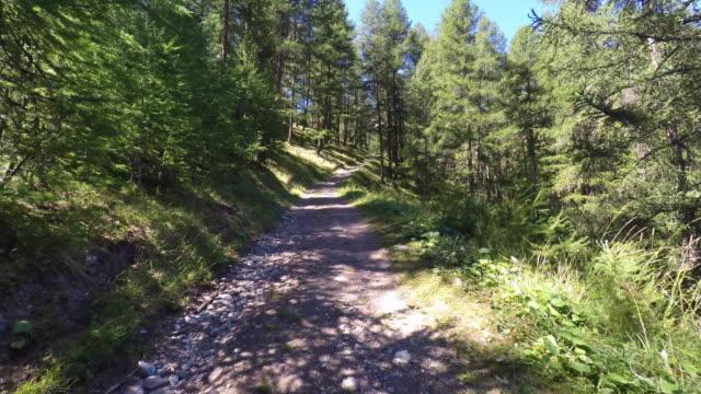 vídeos de stock, filmes e b-roll de walk in the mountains - ponto de vista de caminhada