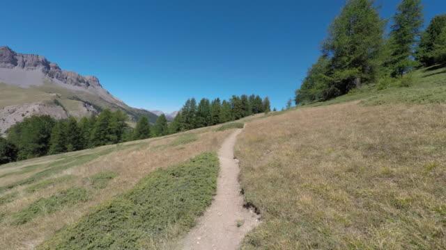 walk in the mountains - 50 sekunder eller längre bildbanksvideor och videomaterial från bakom kulisserna