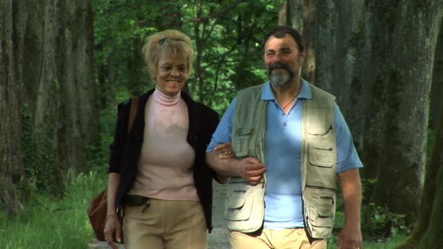 vídeos de stock, filmes e b-roll de hd: caminhada no parque - de braços dados
