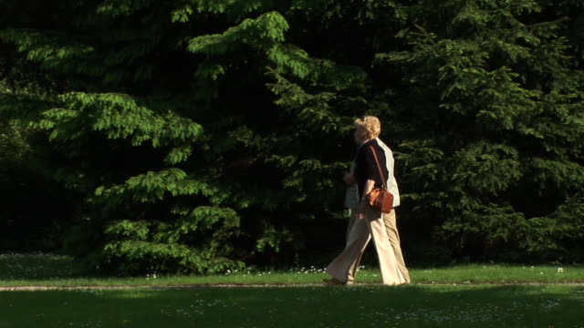 vídeos de stock, filmes e b-roll de hd: caminhada no parque - casado
