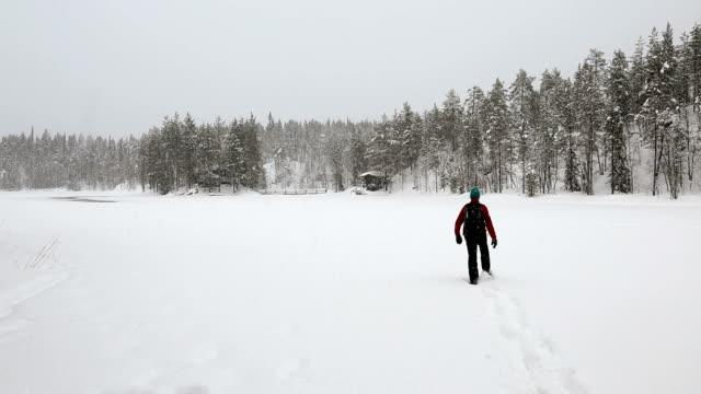 Walker approaching wooden cabin spruce forest Oulanka Nat Pk Finland
