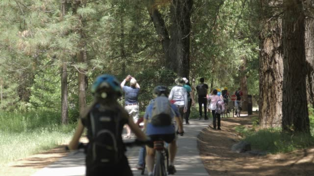 walkers and cyclists at yosemite national park, unesco world heritage site, california, usa, north america - yosemite national park stock-videos und b-roll-filmmaterial