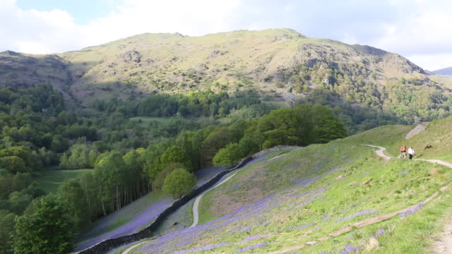 Walkers passing Bluebells on Loughrigg Terrace above Grasmere in the Lake District National Park, Cumbria, UK.