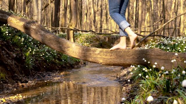 DS zu Fuß auf den creek