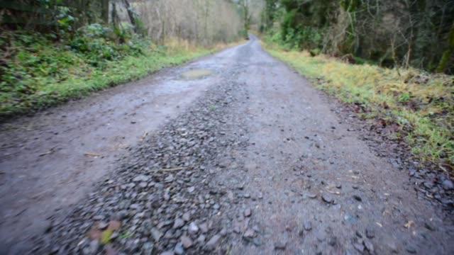 walking along the fairy knowe in ayrshire - david johnson stock videos & royalty-free footage