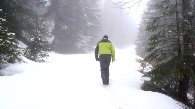 Den verschneiten Pfad