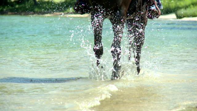 vídeos y material grabado en eventos de stock de hd cámara lenta: pasos y salpicaduras de agua - montar