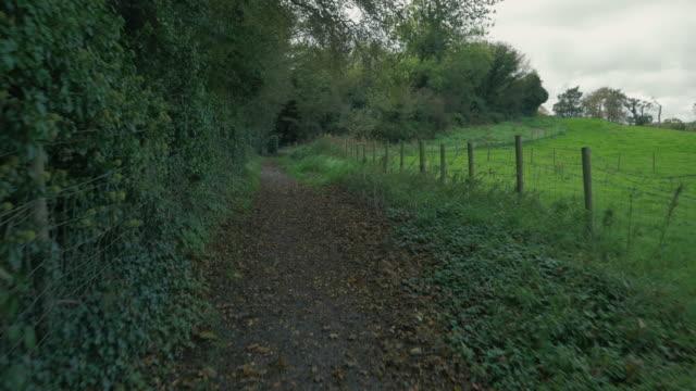 vídeos y material grabado en eventos de stock de caminando por la carretera rural de otoño, irlanda del norte - carretera de campo