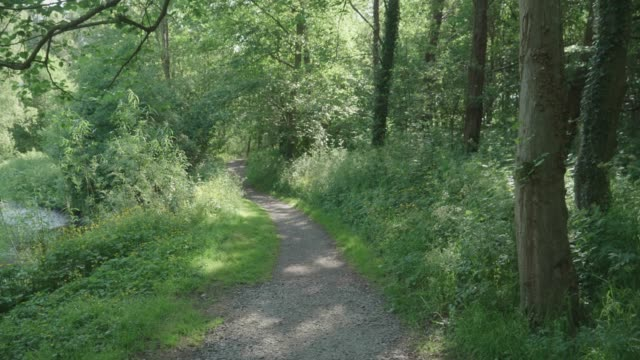 walking at summer countryside road ,northern ireland - zona pedonale strada transitabile video stock e b–roll