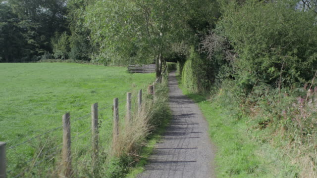 walking at summer countryside road,northern ireland - northern ireland stock videos & royalty-free footage