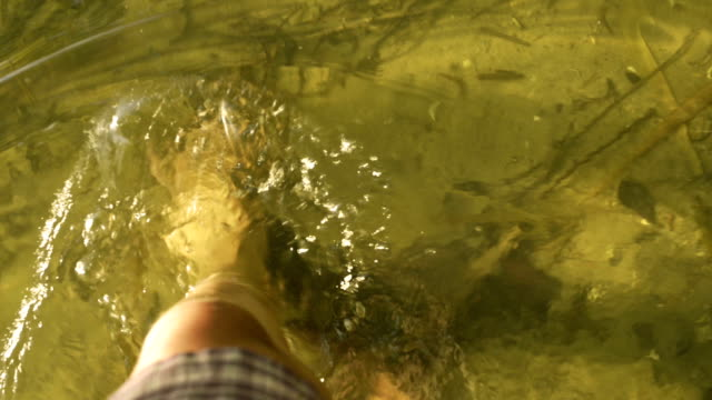 walking barefoot in water of lake - waist deep in water stock videos and b-roll footage