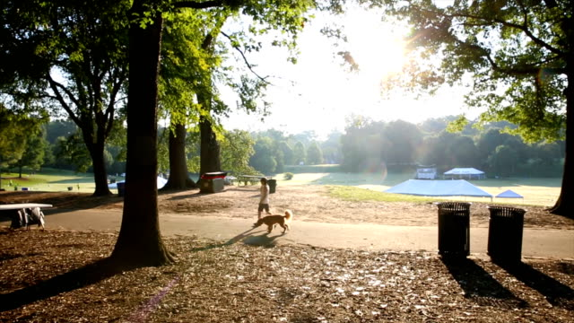 walking dog around piedmont park, atlanta - georgia stati uniti meridionali video stock e b–roll