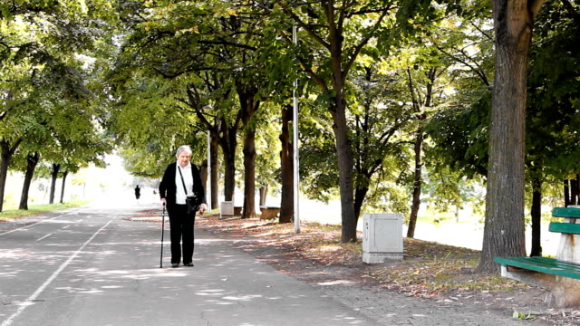 walking grandmother - walking cane stock videos and b-roll footage