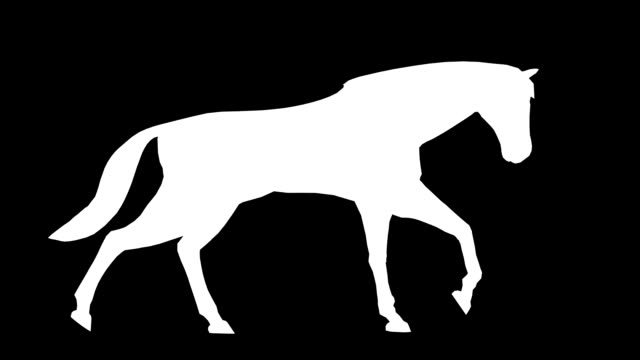 Walking Horse (Loopable)