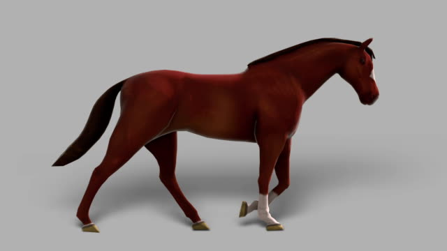 walking horse with alpha channel (loopable) - matte stock videos & royalty-free footage