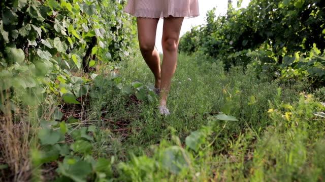 Fuß in einem Weinberg