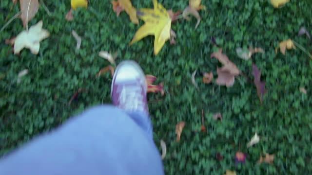 Walking POV in autumn leaves