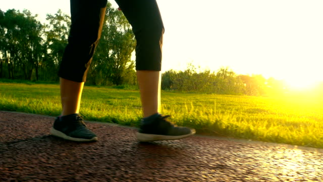 walking in sunlight - scarpe da ginnastica video stock e b–roll