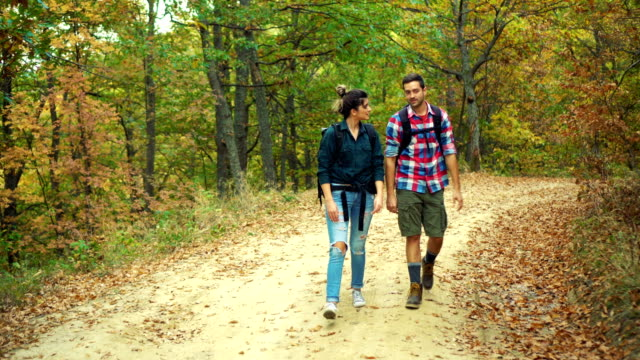 walking in the autumn forest - field trip stock videos & royalty-free footage