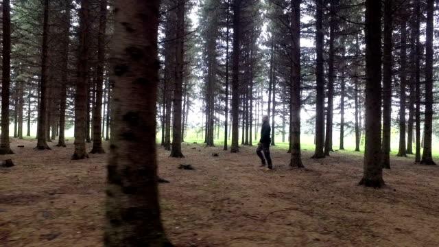 vídeos de stock, filmes e b-roll de caminhada na floresta - ponto de vista de câmera